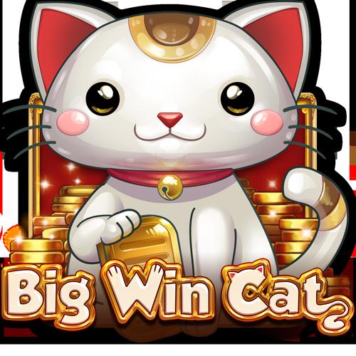 Big Win Cat